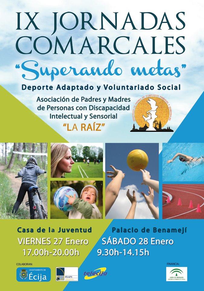 IX JORNADAS COMARCALES
