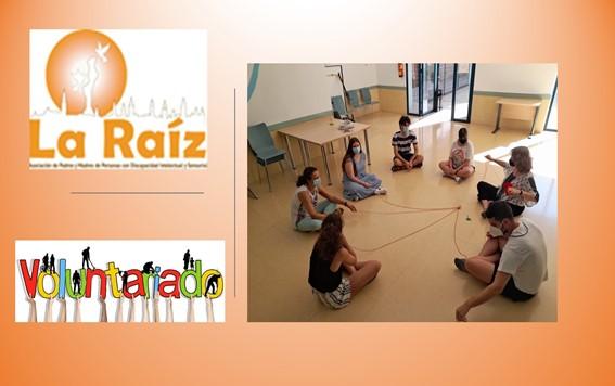la Raíz ha celebrado nuevos talleres de Voluntariado y Ocio inclusivo